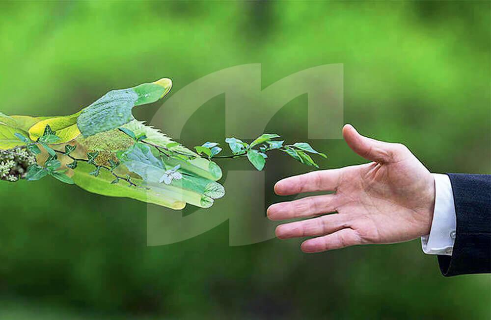 MW-Nachhaltigkeit-Logo